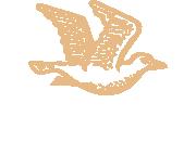 Kauri Bay Boomrock Logo